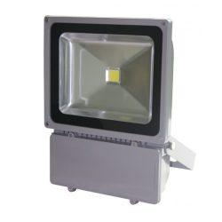 100 W LED reflektor