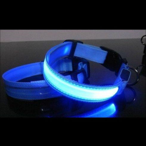 Vílágítós kutyanyakörv kék színben (M méret)