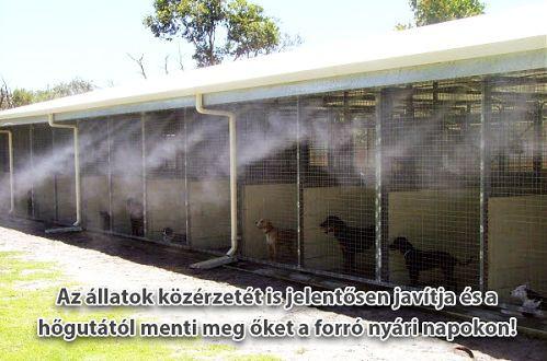 Elhelyezés állattartóknál